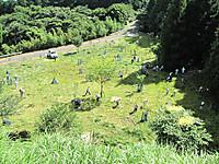 Shitakusagari2012_11