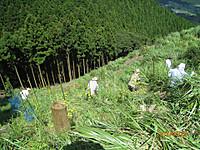 Shitakusagari2012_13